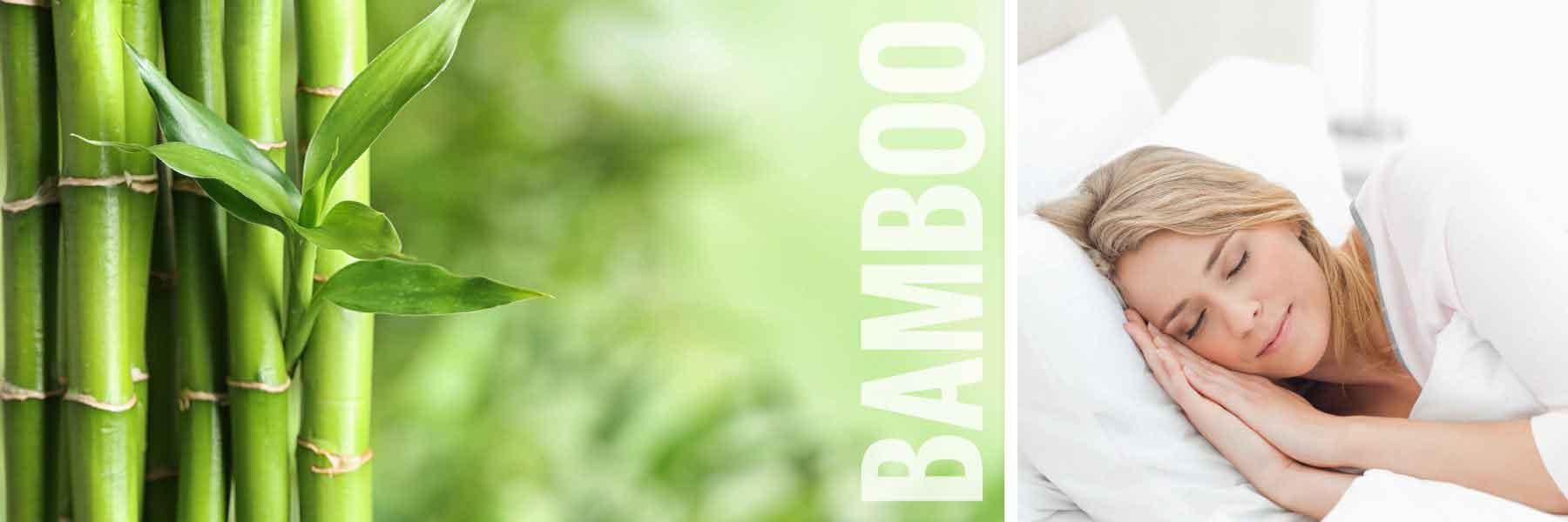 AWOB Banner New4