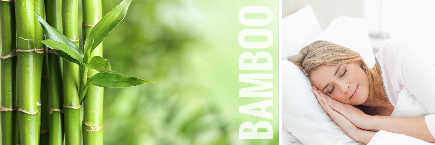 AWOB-Banner-New4